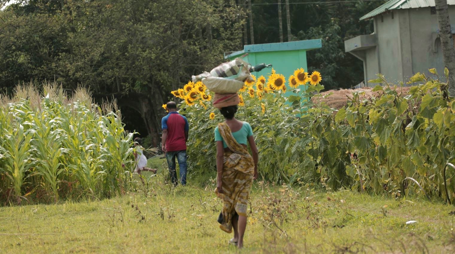 A Village Day